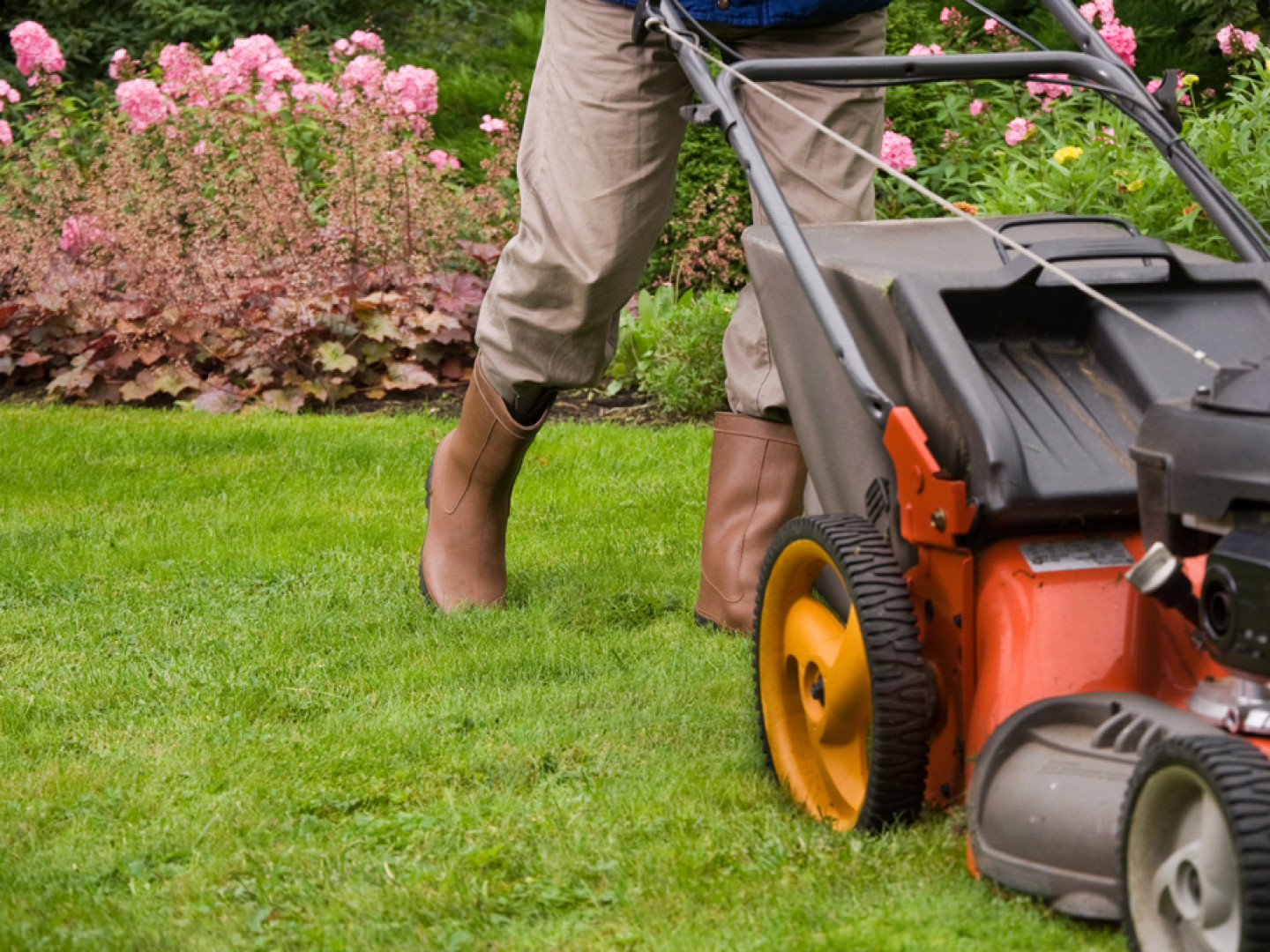 routine lawn mowing services in Creve Coeur, MO